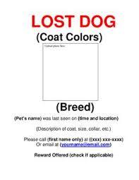 Lost Pet Flyer Maker missing dog sign template Socbizco 56