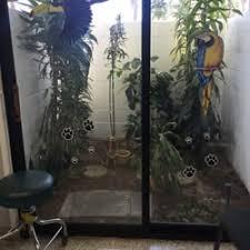 garden grove pet hospital. Photo Of Orange County Emergency Pet Clinic - Garden Grove, CA, United States Grove Hospital