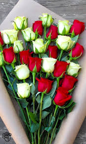 3224 Best Roses Images On Pinterest Flowers Beautiful Roses And
