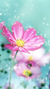 Flower Iphone Wallpapers Wallpaper Wiki
