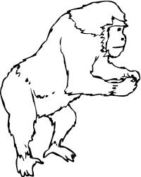 Staande Gorilla Kleurplaat Gratis Kleurplaten Printen