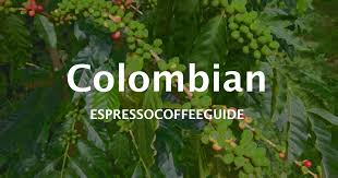 Finding the best colombian coffee is a chore if you don't know where to start. Colombian Coffee Beans Espresso Coffee Guide