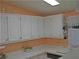Peach Kitchen The Color Is Peach Kitchen Villasillo2008s Weblog Miserv