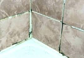 mold in shower caulk remove mold from shower caulk remove mold from shower caulk remove mold