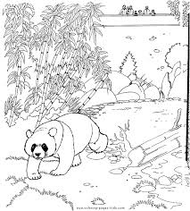 Small Picture Panda bear color page for kids Enjoy Coloring Colouring Pages