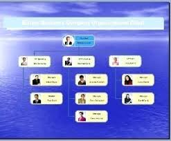 Business Organizational Chart Interesting Microsoft Organizational Chart Chookiesco