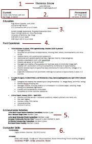 Write Up A Resume] How To Write Up A Resume Uxhandycom, Amazing .