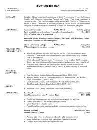 latest design examples of college resumes resume example top how to write a resume for a college student