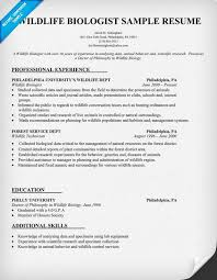 Forest Worker Sample Resume Mesmerizing Pin By Resume Companion On Resume Samples Across All Industries