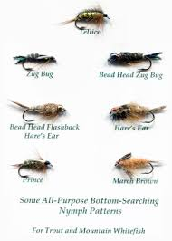 Fly Fishing Fly Identification Chart Fishing Flies Identification Fly Fishing For Mountain