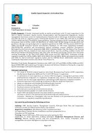 Quality Auditor Sample Resume New Sample Resume For A Job Software