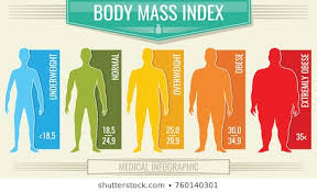 Bmi Photos 6 259 Stock Image Results Shutterstock