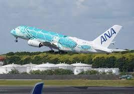 Ana a380 遊覧 飛行