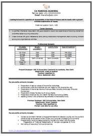 Simple Resume Format Pdf | Simple Resume Format | Pinterest | Simple ...