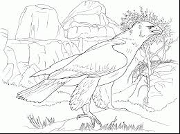 Small Picture impressive bald eagle coloring page with eagle coloring page