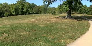 lawn care cincinnati. Wonderful Cincinnati U0027Uberu0027 For Lawn Care Is Coming To Cincinnati To Lawn Care 8