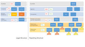 Saas Org Chart Organizational Management Setup For Segment Reporting Sap