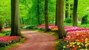 Flower Landscape Wallpapers - Top Free ...