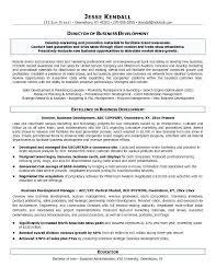 Business Development Objective Statement Business Development Resume Objective Freeletter Findby Co