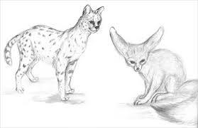 24 Animal Drawings Free Psd Ai Vector Eps Format