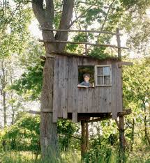 simple tree house pictures. My Dream Treehouse Would Have Been A Double (two Trees, Probably About 10- Simple Tree House Pictures