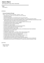 Business Development Manager Resume Business Development Manager Resume Sample Velvet Jobs 6