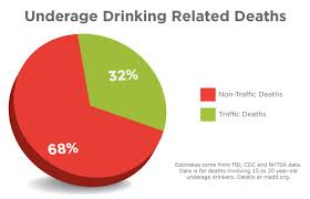 Underage Drinking Chart Drunk Driving Pie Chart Www Bedowntowndaytona Com