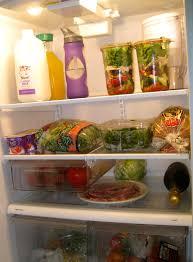 Huge Refrigerator Refrigerator Look Book Jihan Thompson Well Good
