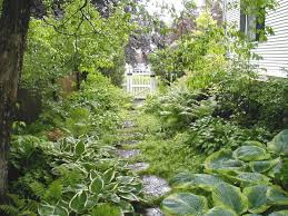 plant combinations for shady side yards