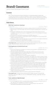Web Team Lead/Senior Developer Resume samples