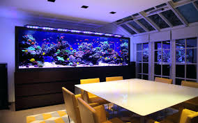 fish tank for office. Related Office Ideas Categories Fish Tank For