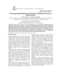 promising sudanese medicinal plants antibacterial activity a r