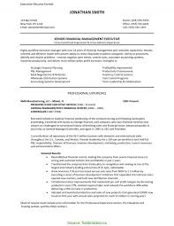 Newest Resume Format For Back Office Executive Resume Format For