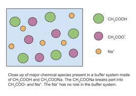 Buffer System In Chemistry Definition Overview Video Lesson