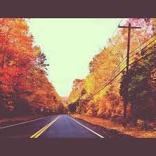 driving through autumn in CT. photography by courtney barrett |  Photography, Autumn, Barrett
