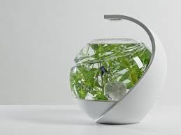 Self Cleaning Fish Tank Garden Self Cleaning Fish Tank