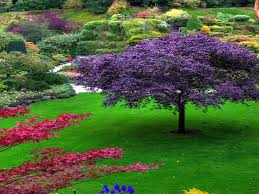 Small Picture Beautiful Garden Pictures Home Design Ideas