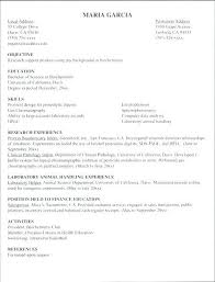 Resume Templates For Internship | Ophion.co