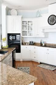 Should I Paint My Kitchen Cabinets White Impressive Inspiration Design