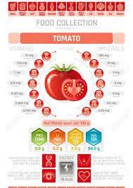 Food Infographics Poster Tomato Vegetable Vector Illustration