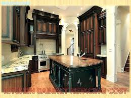 refacing cabinet doors luxury glass door kitchen cabinets home depot new cabinet door refacing