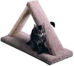 Amazon.com : <b>Cat</b> Scratch <b>Triangle</b> : Color Natural : Size 16 INCHES