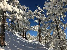 Roads still not easy to travel today. Visit South Lake Tahoe For President S Day Weekend Buckingham Luxury Vacation Rentals