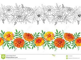 Marigold Floral Design Vector Seamless Pattern With Outline Tagetes Or Marigold