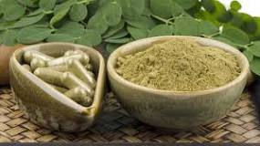 Image result for Can you eat moringa leaves everyday?