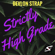 Devlon Compatibility Chart Strictly High Grade By Devlon Strap On Mp3 Wav Flac Aiff
