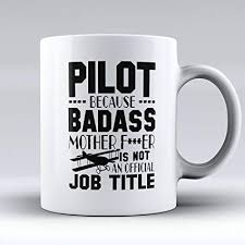 aviation pilot mugs fly boys coffee cup funny aviation pilot gifts
