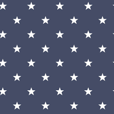 Noordwand Sterrenbehang In Donkerblauw Wit Long Island Nautic Stars