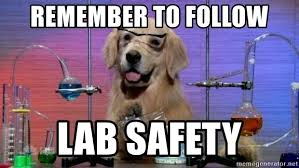 Image result for science dog
