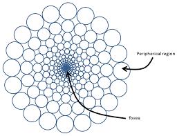 Sensors free full text data driven multiresolution camera using the foveal adaptive pyramid html